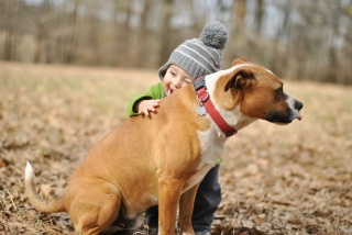 child, boy, dog, each, mood, joy, объятьяbaby, boy, dog, friend, mood, joy, hugs, background, Wallpaper, widescreen, full screen, widescreen, HD Wallpapers, Background, wallpaper, Widescreen, fullscreen