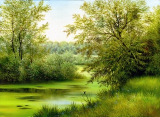 picture, painting, summer, river, nature, bird, the pond, trees, flowers, Bay