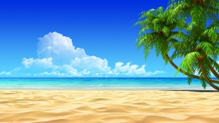 tropics, photoshop, summer, sand, the ocean, the sky, clouds, palm trees, shadow
