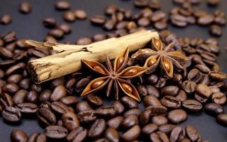 COFFEE BEAN, cinnamon, grain, twig