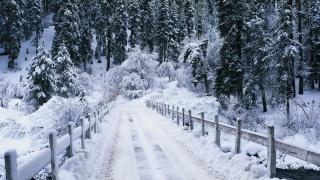 речка, мостик, дорога, лес, зима