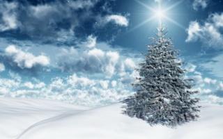 Новий рік, ялинка, зима