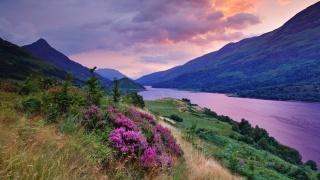 облака, равнины, лето, тучи, трава, река, цветы, закат