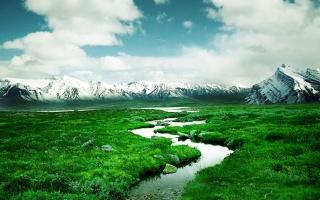 delta, řeka, zelená, cesta, voda, pole