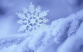 Новий рік, зима, сніг, сніжинка