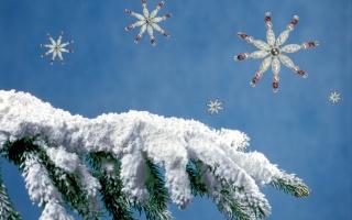 Новий рік, ялинка, сніг, сніжинки
