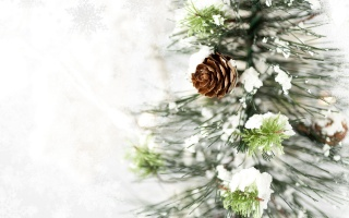 Новий рік, ялинка, сніг, зима, шишка