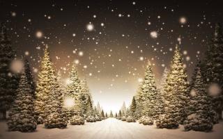 Новий рік, свято, ліс, сніг