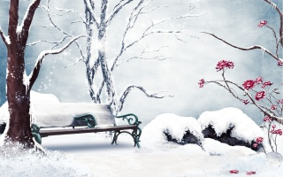 зима, лавка, квіти