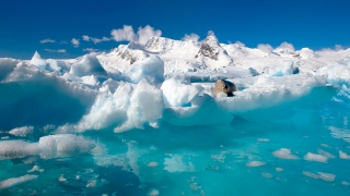 Antarctica, ICE, snow, the ocean, nature, water, North