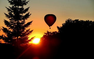 trees, forest, balloon, dawn, silhouettes, the sky