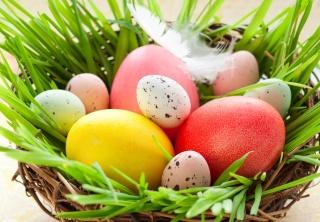 Пасха, куриные, пасха, пасхальные, ЯЙЦА, праздник, весна