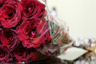 scarlet, makro, kytice, květiny, růže