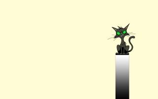 sedí, špičáky, pás, Kočka, kočka, černá