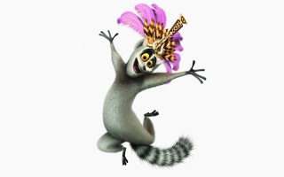 madagascar, white background, cat lemur, Madagascar, Julian