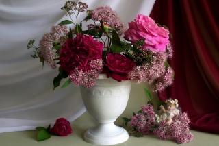šípkový, anděl, květiny, květina, ангелок, příroda, kytice