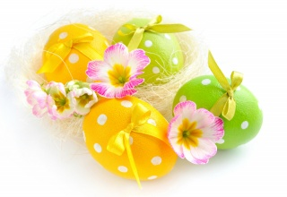 flowers, EGGS, spring, Easter