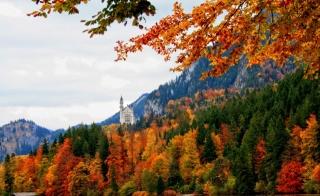 Germany, Bayern, Schwangau, autumn, forest, mountains