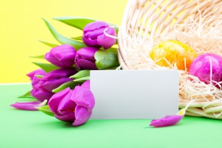lilac, spring, tulips, flowers, holiday, Easter
