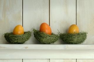 shelf, EGGS, Easter, socket
