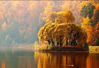 autumn, trees, river, the sky