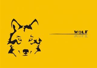 wolf, vlk, žlutá