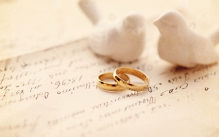 dove, PAIR, Engagement rings, wedding