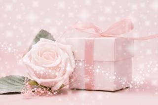 růžové pozadí, růže, květina, Box. páska