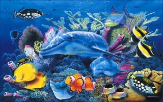 красиво, голубое, дельфин, Кристиан, море, реше, аквариум