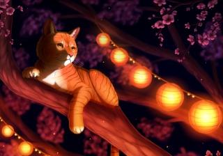 кіт, кішка, рудий, дерево, китайський ліхтарик, рожеві квіти, ніч
