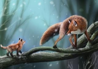 Fox, Fox, tree, branch, snow