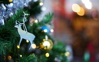 hračka, vánoční strom, svátek