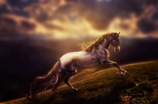 horse, run, digital art, rendering, art