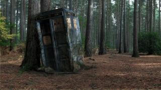 коробка, дерево, ліс, Поліцейська будка, тардіс