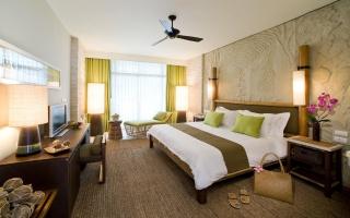постель, комната, телевизор, подушки, занавески, окно