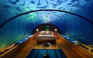 спальна кімната, акваріум, вода, рибки
