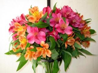 flowers, alstremeria, nature, bouquet, flower