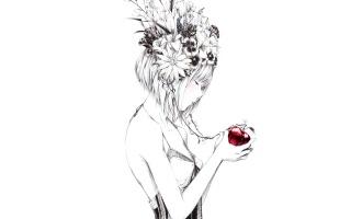 art, girl, Apple, flowers, drawing, sawasawa
