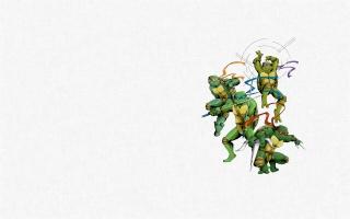 teenage mutant ninja turtles, Teenage mutant ninja turtles