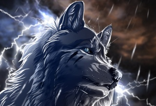 ніч, блискавки, вовк, мистецтво, дощ, wolfroad