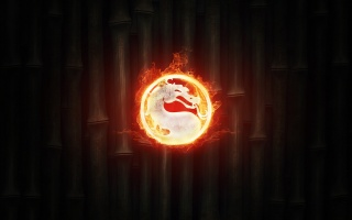 fire, bamboo, logo, logo, fire, Kombat, Mortal Kombat, background