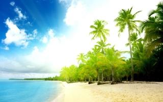 літо, природа, океан, пальми, тепло, вода, берег, хмари, небо