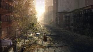 арт, руины, заброшенность, иосия, город, заросли, улица