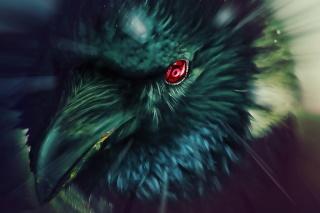 Ворон, очей, шарінган, наруто