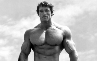 arnold schwarzenegger, in the very dawn of forces