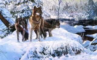 forest, winter, snow, art, Richard luce, wolves, river