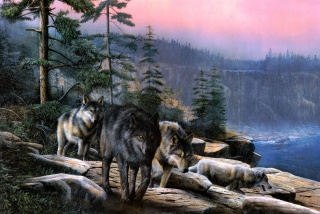the sky., trees, cliff, wolves
