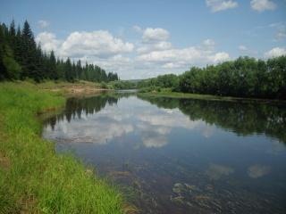 léto, řeka, трова, облока