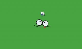 language, hunting, fly, ambush, frog, green