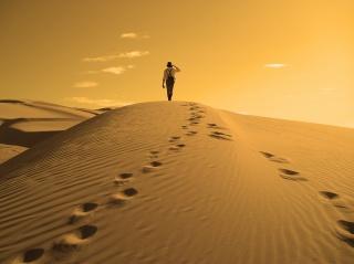 пустыня, барханы, мужчина, природа, солнце, дюны